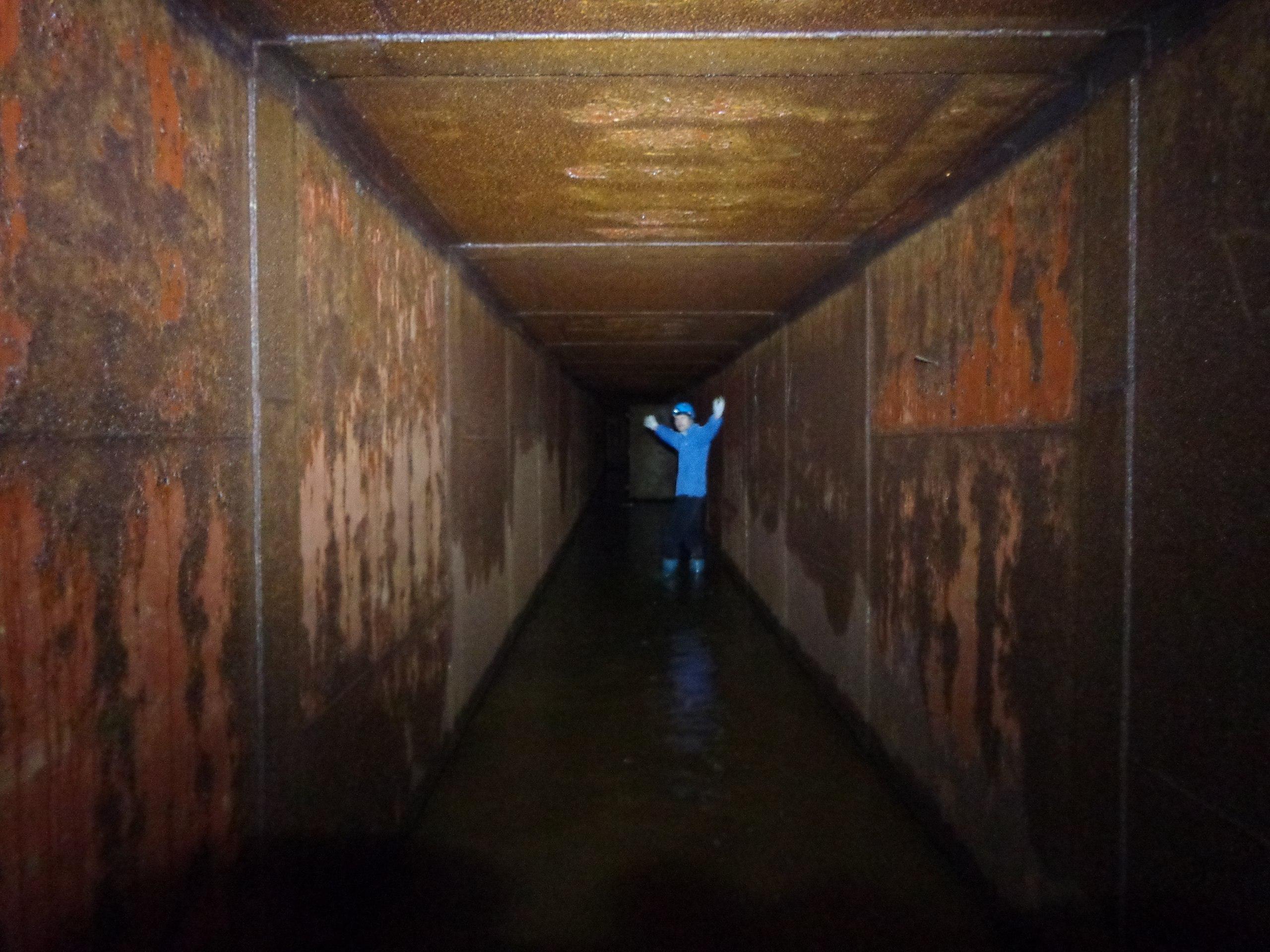 входной коридор